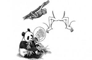Bat/Panda